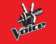 'The Voice' Logo