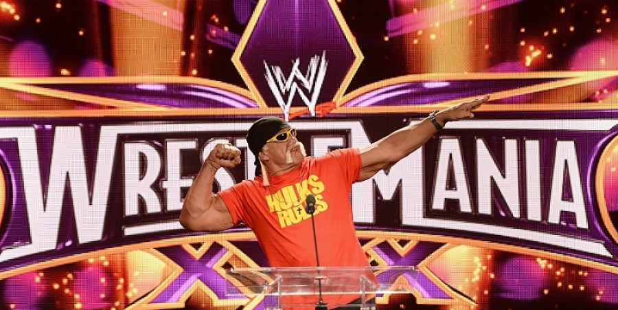 Roger Stone Wants Hulk Hogan To Run For Senate, But Wrestler Says No - For Now, At Least