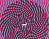 Deerhunter -